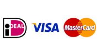 Betalen OneTap Online Website