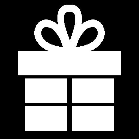 WordPress Website Gift binnen 1 uur online!